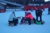 Zimski športni - NIS 2016